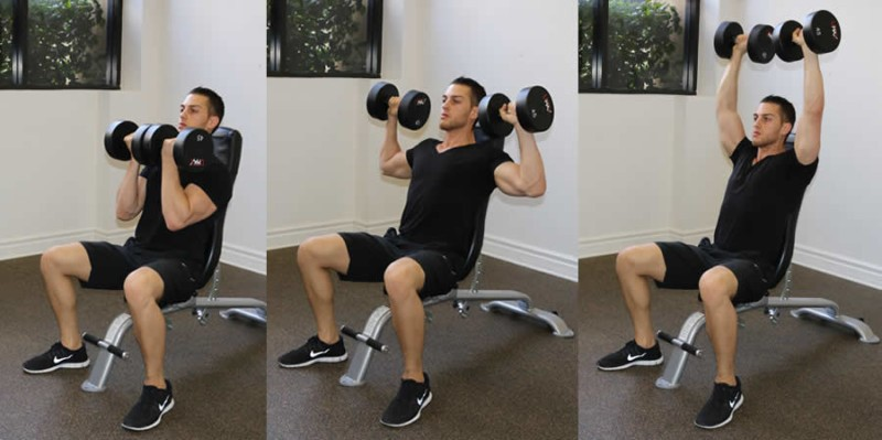 Arnold Bench Press for deltoid workout